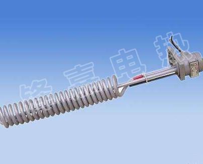 铁氟加电热管